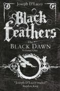 black feathers large