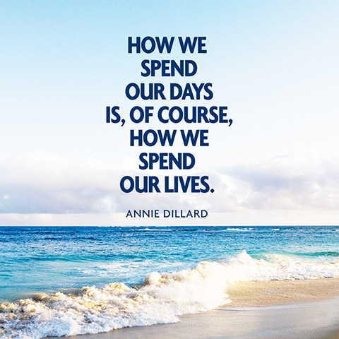quotes-days-lives-annie-dillard-480x480